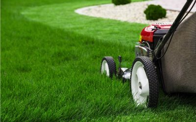Top 10 tips for injury-free lawn mowing